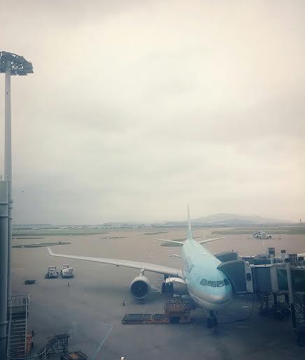 Desta vez eu vim no avião símbolo da Korean Air, o azulzinho!