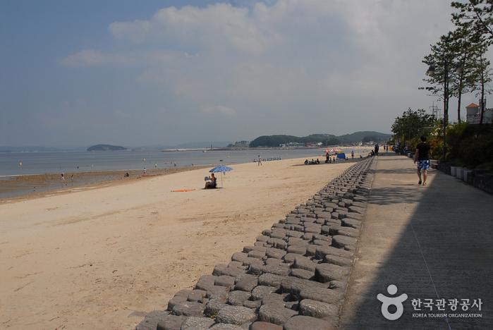 beach - 9