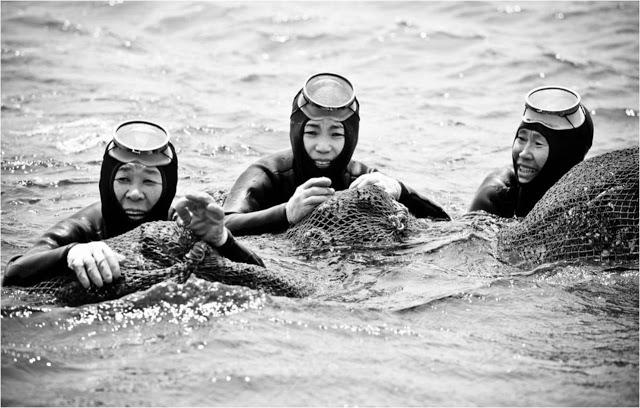 As mergulhadoras de Jeju, no passado. Foto: Shuterstock