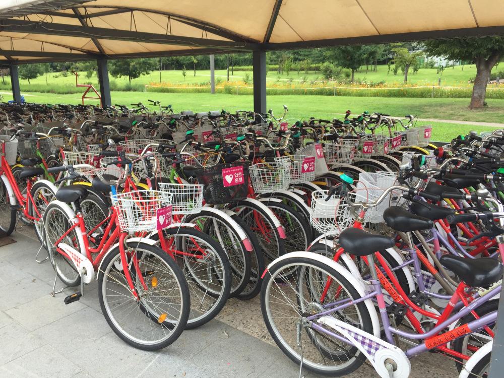 Bicicletas de aluguel. Foto: qtkitchen.com