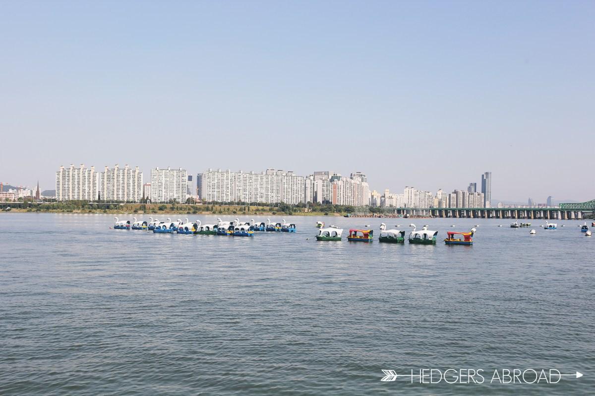 Pedalinhos no Rio Han. Foto: Hedgers Abroad