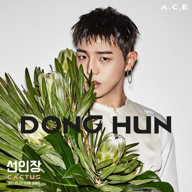 ACE-DONG