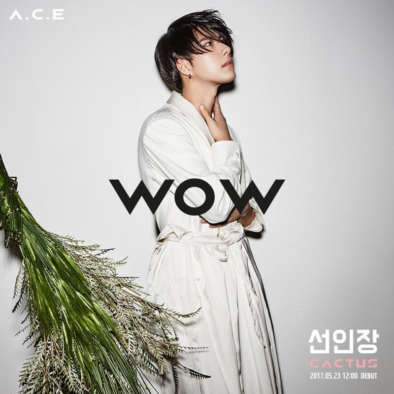 ACE-WOW