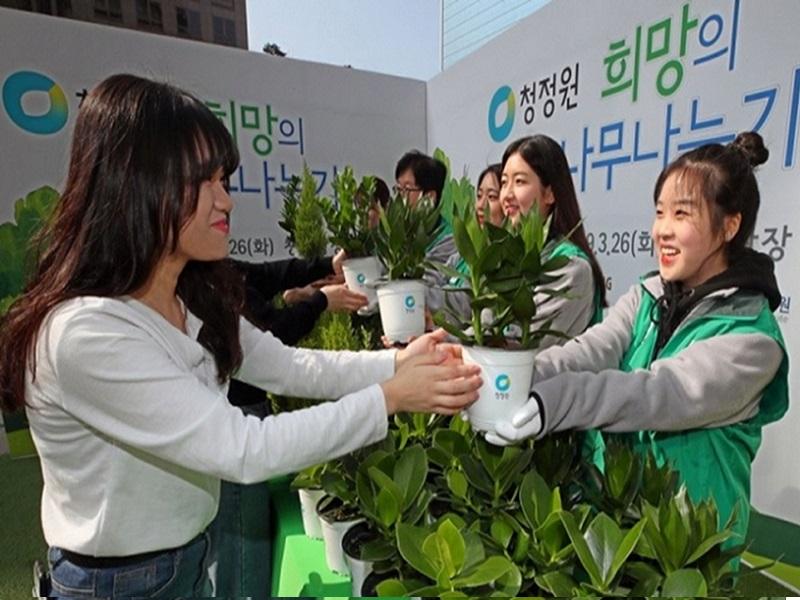 Seul Anuncia Iniciativa &Quot;Polegar Verde&Quot;