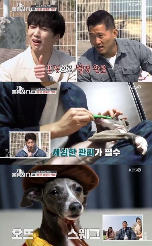 Kang Seung Yoon E Lee Seung Hoon Do Winner Expressam Amor Por Seus Cães Em Programa De Variedades