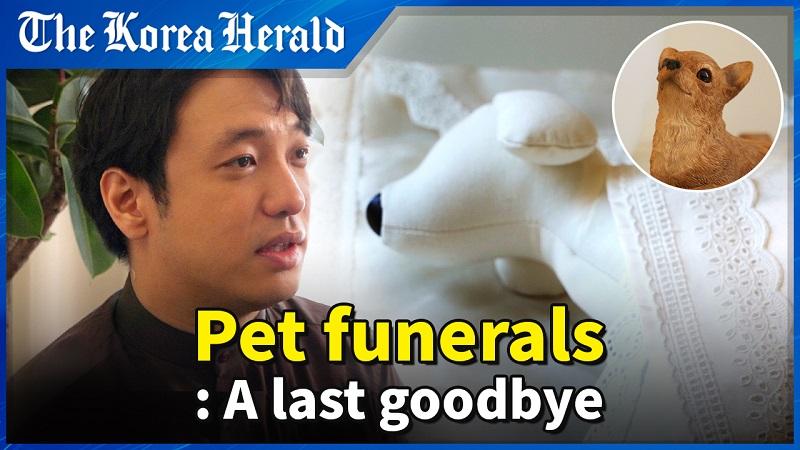 Serviço Funerário Para Animais De Estimação, A Nova Mania Da Coreia